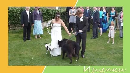 Супер смешни изцепки от сватби