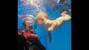 Swimming Babies - Corazon De Nino - Raul Di