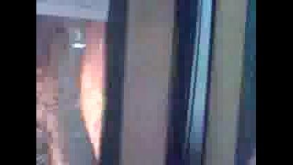 Видео0358