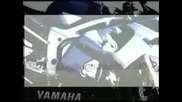 Yamaha R6 2002 Spot