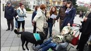 Първото дипломирано куче терапевт Тами