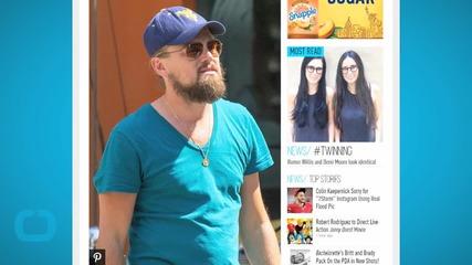 Even Leonardo DiCaprio Uses a Selfie Stick!