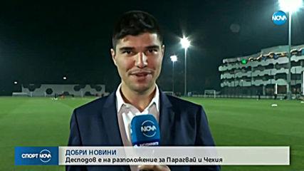 Спортни новини (13.11.2019 - централна емисия)