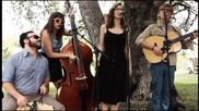 Lake Street Dive - Stop Your Crying - at Old Settlers Music Festival 2014