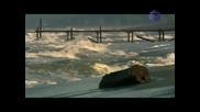 Хитовата песен на Джена - Случайна среща (high quality)