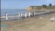 California Oil Spill Company Slightly Downgrades Size of Pipeline Leak
