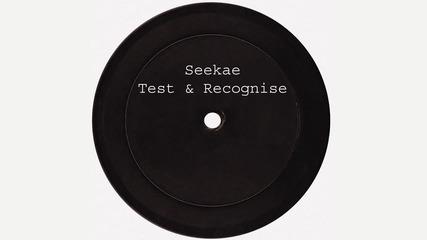 alternative!!! Seekae - Test & Recognise (flume Re-work)