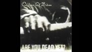 Children of Bodom - Are You Dead Yet