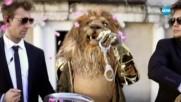 Лъвът изпълнява Wrecking Ball на Miley Cyrus | Маскираният певец
