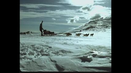 Водка Аляска - Реклама 2004