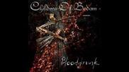 Children Of Bodom - Blooddrunk Album Solos