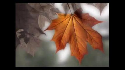 Forever Autumn - Chris Spheeris