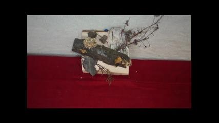 cvetelin kamburov
