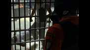 [screens] Prison Break game for Playstation 3 (ps3), Xbox 360 and Pc