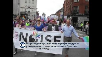 В Ирландия ще се проведе референдум за узаконяване на гей браковете