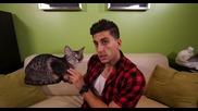 Пич прецака приятелката си с картонена котка