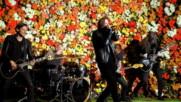 American Nightmare - Flowers Under Siege (Оfficial video)