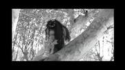 Evanescence. - .my Immortal (hq)