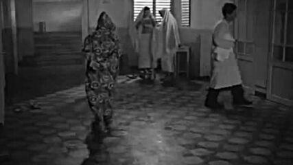 Любимец 13 (1958)