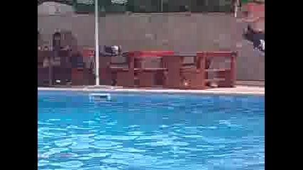 Скок във басейн