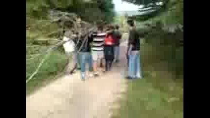 Носене На Дърво