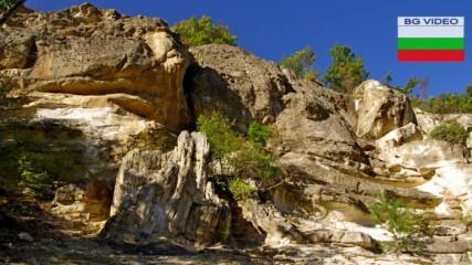 Вкаменена гора в Родопа планина