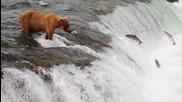 Аляска - Непознати води