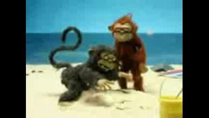 лудите маймунки