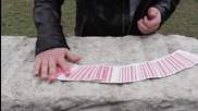 Vensan - Контролиране на карти 4/ Card Control IV