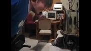 Най - смешните котки - Компилация