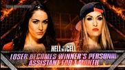 Wwe Hell in a Cell 2014 Official Match Card- Brie Bella vs. Nikki Bella