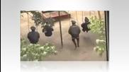 Eто как прекарват обедната си почивка полицаите в Русия