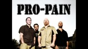 Pro - Pain - Terpentin