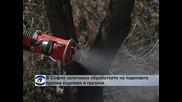 В София започна пръскане срещу кърлежи и гризачи
