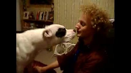 Лизане Между Куче И Момче