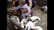 Савина обича животните...
