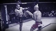 '' Ufc '' Най-добрата Мма организация в света ( Ultimate Fighting Championship )