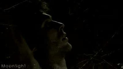 the vampire diaries /damon salvatore