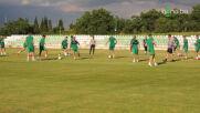 Берое стартира подготовка за сезон 2021/22