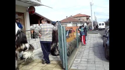 кукери в средец - 2010