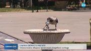 В София раздават минерална вода заради жегите (ВИДЕО)