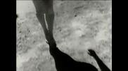 (1989) Belinda Carlisle - Leave A Light On Превод от T I 6 K A T A 8 7