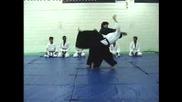 Ushiro - Ryokata - Iriminage (aikido)