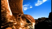 Rednex - Spirit Of The Hawk (official music video) + Превод
