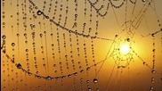 Alan Connor and Mike Melange - I Love The Sunshine (beltek Remix).mp3