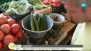 Ядем ли вносни зеленчуци на завишени цени?