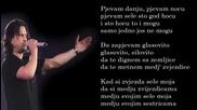 Aca Lukas - Pjevam danju pjevam nocu - (Audio - Live 1999)