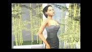 Beyonce And Shakira - Beatiful Liar Sims 2