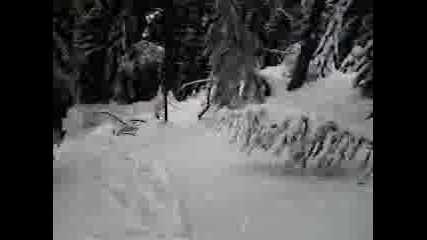 Ски Състезание