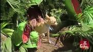 Хищно Растение - Скрита Камера